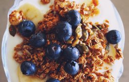 food ingredients 1 AVEL main Ά ύλες τροφίμων
